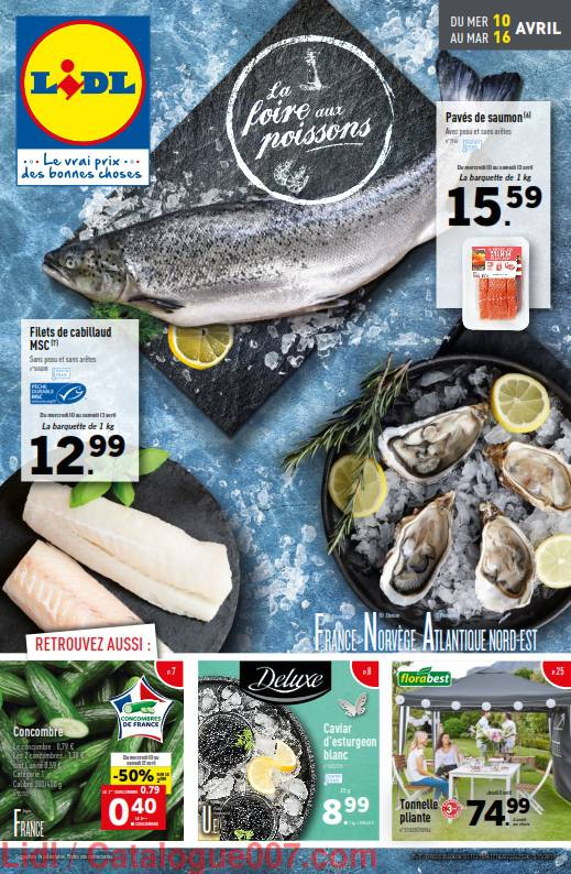 Lidl arrivages du 10 au 16 avril 2019